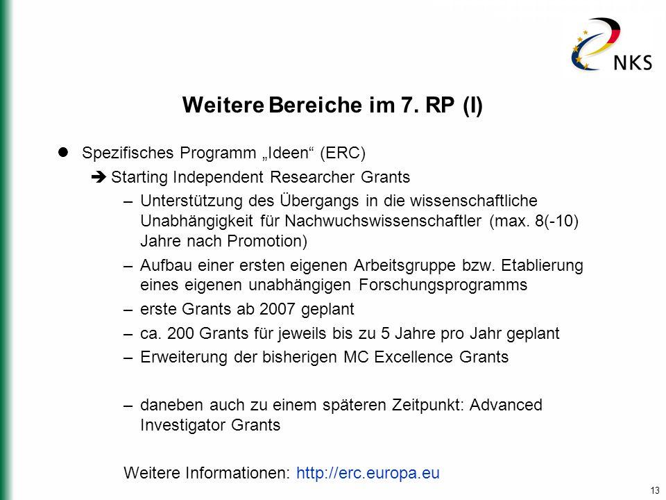 """13 Weitere Bereiche im 7. RP (I) Spezifisches Programm """"Ideen"""" (ERC)  Starting Independent Researcher Grants –Unterstützung des Übergangs in die wiss"""