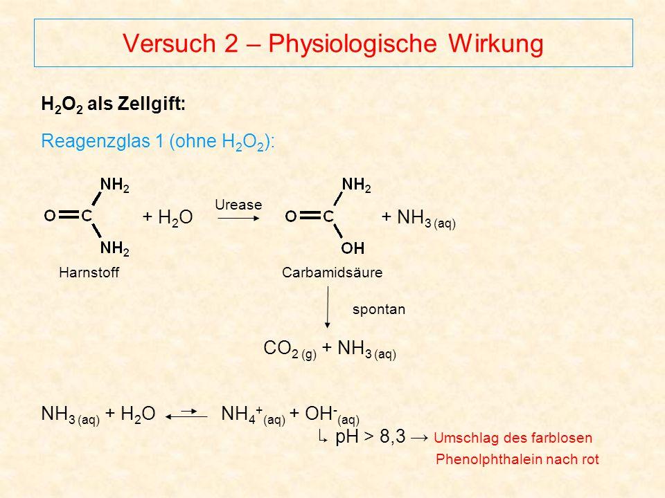 Versuch 2 – Physiologische Wirkung H 2 O 2 als Zellgift: Reagenzglas 1 (ohne H 2 O 2 ): NH 3 (aq) + H 2 O NH 4 + (aq) + OH - (aq) ↳ pH > 8,3 → Umschla