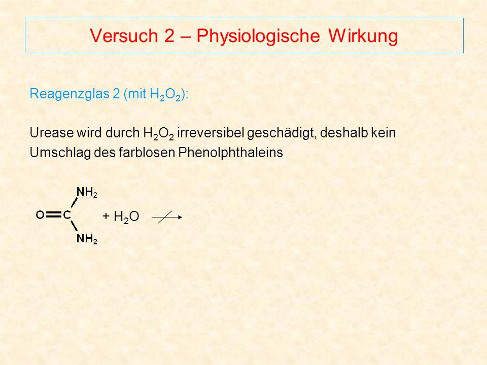 Versuch 2 – Physiologische Wirkung Reagenzglas 2 (mit H 2 O 2 ): Urease wird durch H 2 O 2 irreversibel geschädigt, deshalb kein Umschlag des farblose