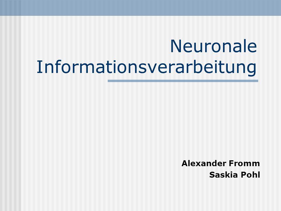Neuronale Informationsverarbeitung Alexander Fromm Saskia Pohl