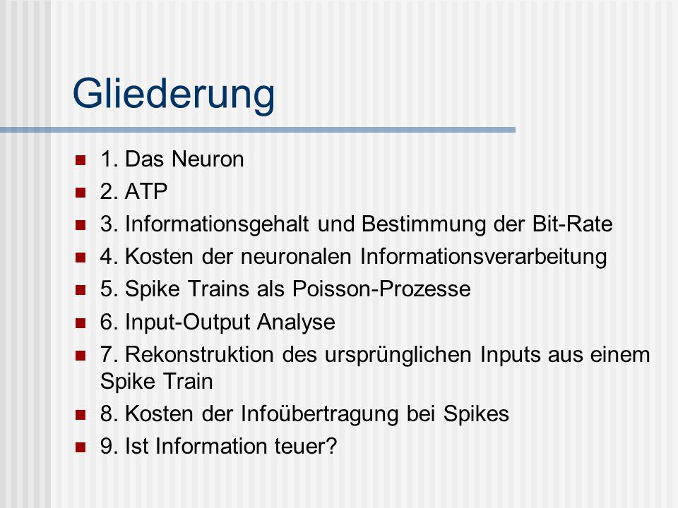 Gliederung 1. Das Neuron 2. ATP 3. Informationsgehalt und Bestimmung der Bit-Rate 4. Kosten der neuronalen Informationsverarbeitung 5. Spike Trains al