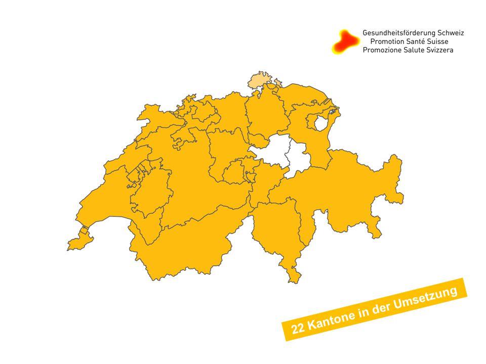 22 Kantone in der Umsetzung