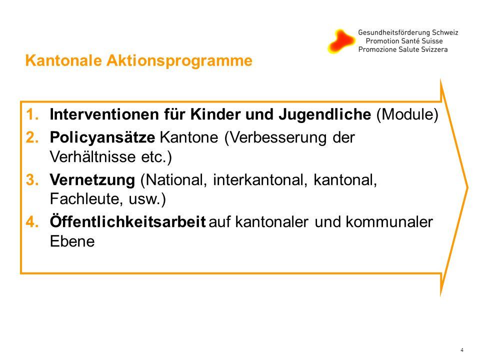 4 Kantonale Aktionsprogramme 1.Interventionen für Kinder und Jugendliche (Module) 2.Policyansätze Kantone (Verbesserung der Verhältnisse etc.) 3.Vernetzung (National, interkantonal, kantonal, Fachleute, usw.) 4.Öffentlichkeitsarbeit auf kantonaler und kommunaler Ebene