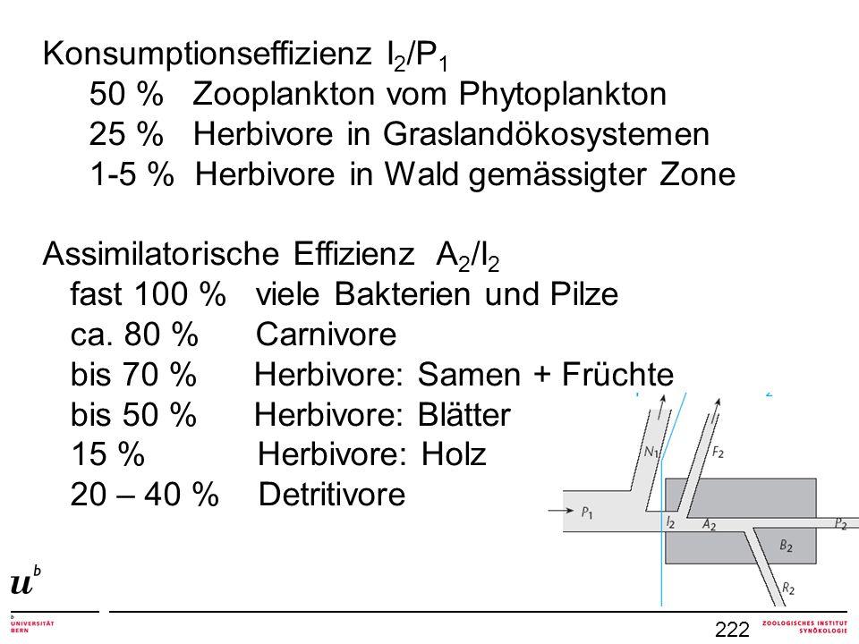 222 Konsumptionseffizienz I 2 /P 1 50 % Zooplankton vom Phytoplankton 25 % Herbivore in Graslandökosystemen 1-5 % Herbivore in Wald gemässigter Zone A
