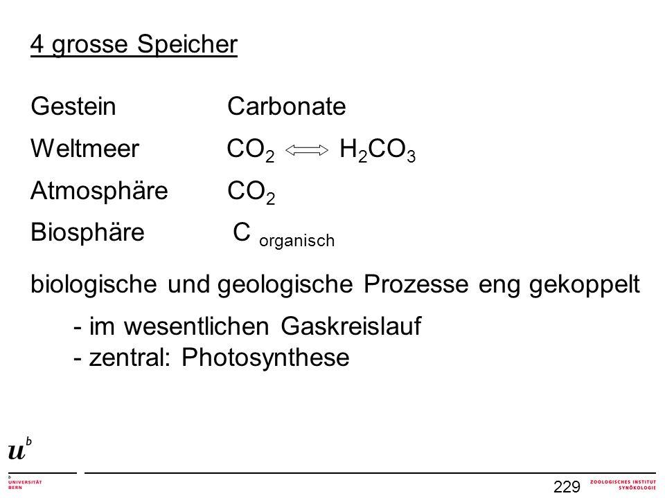 229 4 grosse Speicher Gestein Carbonate Weltmeer CO 2 H 2 CO 3 Atmosphäre CO 2 Biosphäre C organisch biologische und geologische Prozesse eng gekoppel
