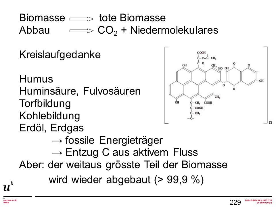 229 Biomasse tote Biomasse Abbau CO 2 + Niedermolekulares Kreislaufgedanke Humus Huminsäure, Fulvosäuren Torfbildung Kohlebildung Erdöl, Erdgas → foss