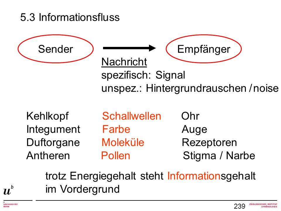 239 SenderEmpfänger Nachricht spezifisch: Signal unspez.: Hintergrundrauschen / noise Kehlkopf Schallwellen Ohr Integument Farbe Auge Duftorgane Molek