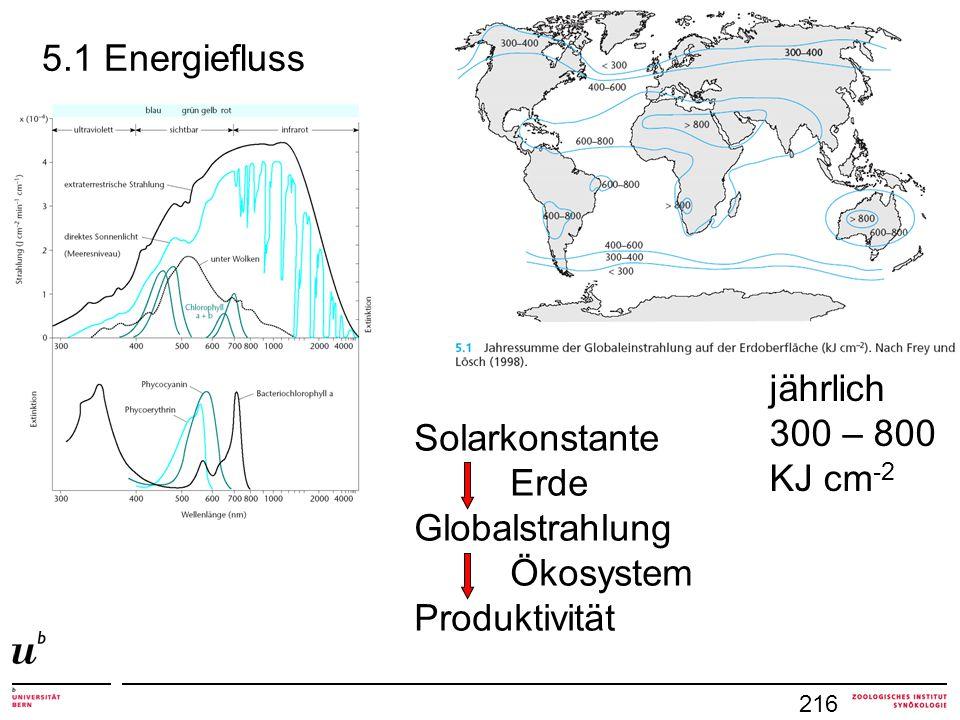 216 5.1 Energiefluss Solarkonstante Erde Globalstrahlung Ökosystem Produktivität jährlich 300 – 800 KJ cm -2