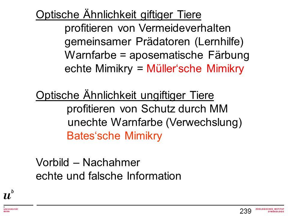 239 Optische Ähnlichkeit giftiger Tiere profitieren von Vermeideverhalten gemeinsamer Prädatoren (Lernhilfe) Warnfarbe = aposematische Färbung echte M