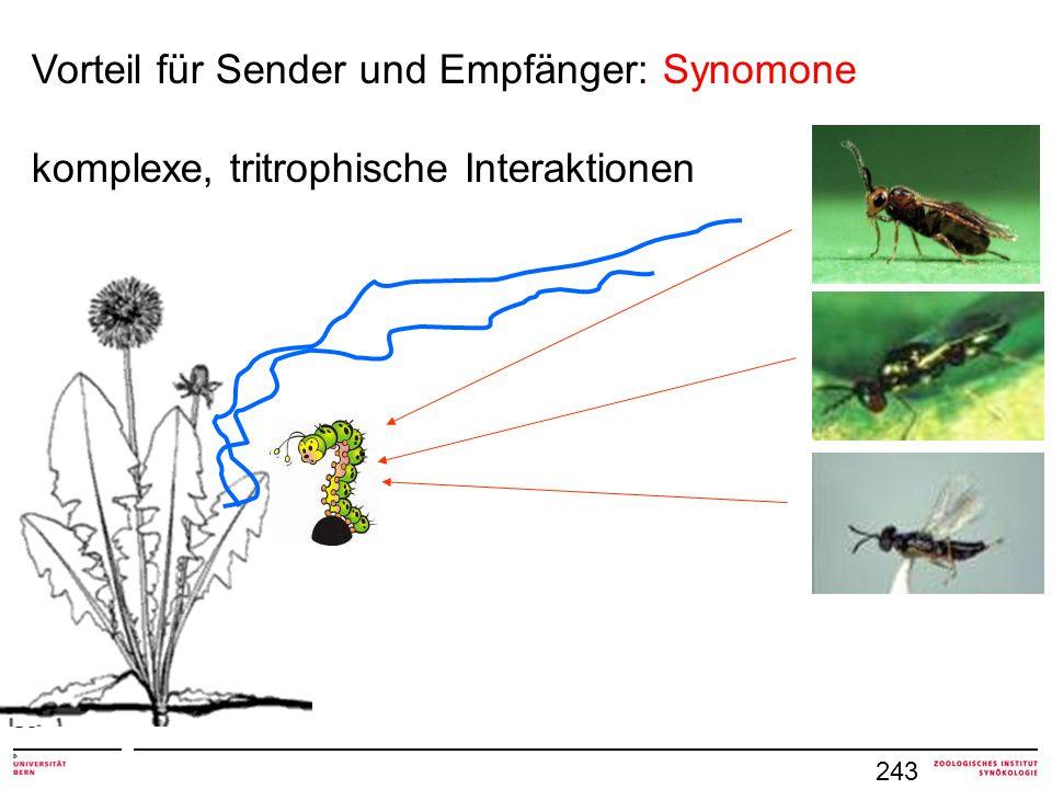 243 Vorteil für Sender und Empfänger: Synomone komplexe, tritrophische Interaktionen