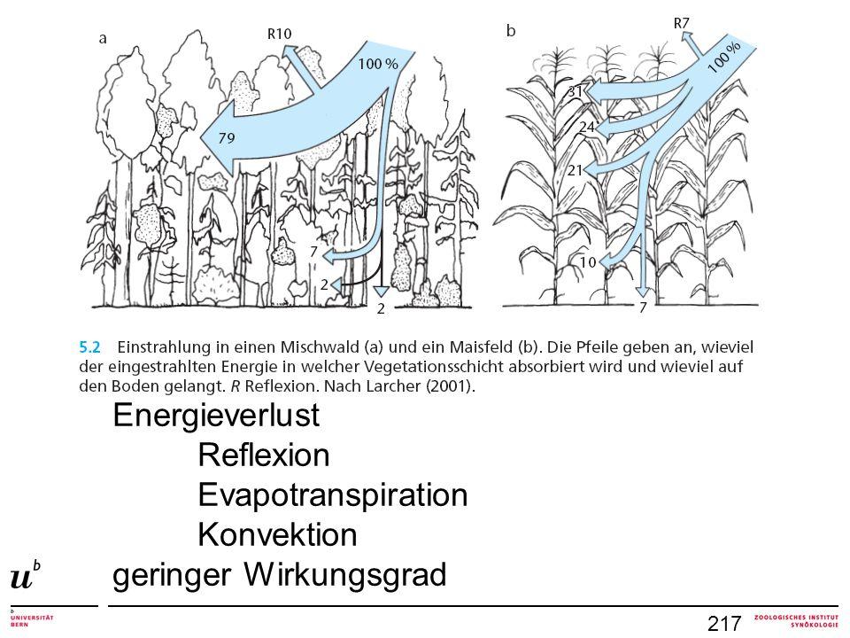 218 Biomasse eines Ökosystems = Σ autotropher + heterotropher Organismen Bruttoprimärproduktion BPP = Σ photosynthetische + chemosynthetische Produktion inklusive Atmungsverluste Nettoprimärproduktion NPP = BPP – Atmungsverluste Nettoproduktion eines Ökosystems = NPP – Frass durch Herbivoren (das was übrig bleibt) Bestandesbiomasse = standing crop (Alter des Ökosystems: Maisfeld vs.