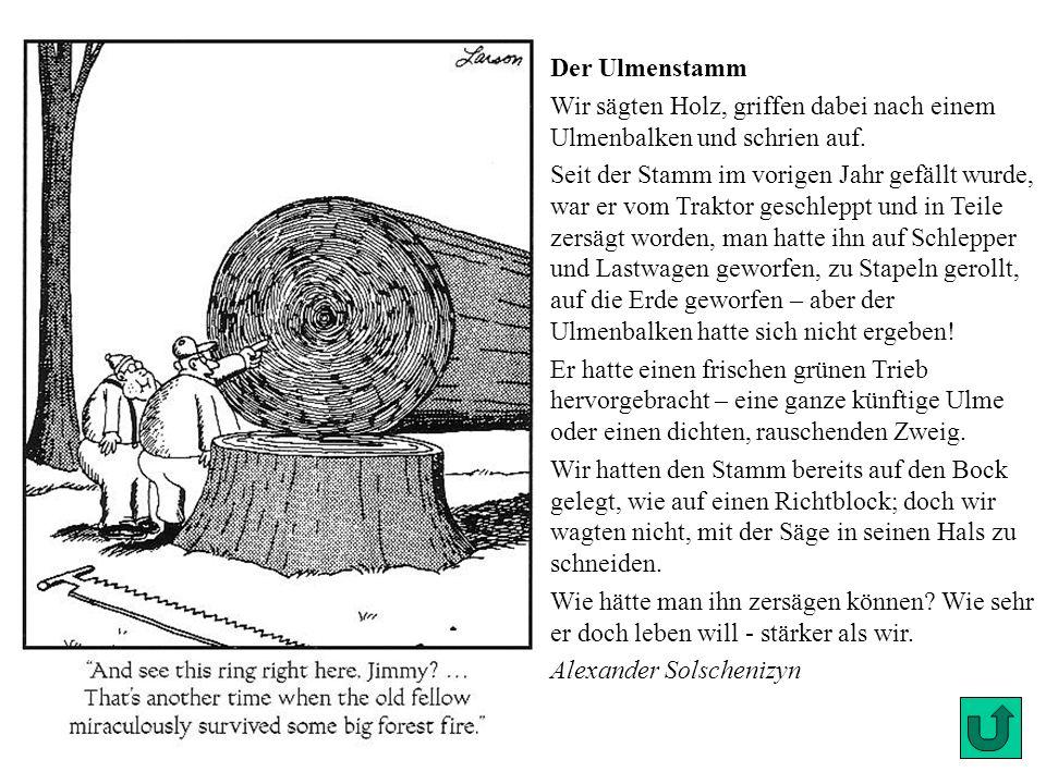 Hier irrt Goethe Heinrich Düntzer gab in seiner Goethe- Gesamtausgabe zu vielem genaue Kommentare. So schreibt Goethe, daß seine wirklich große Liebe