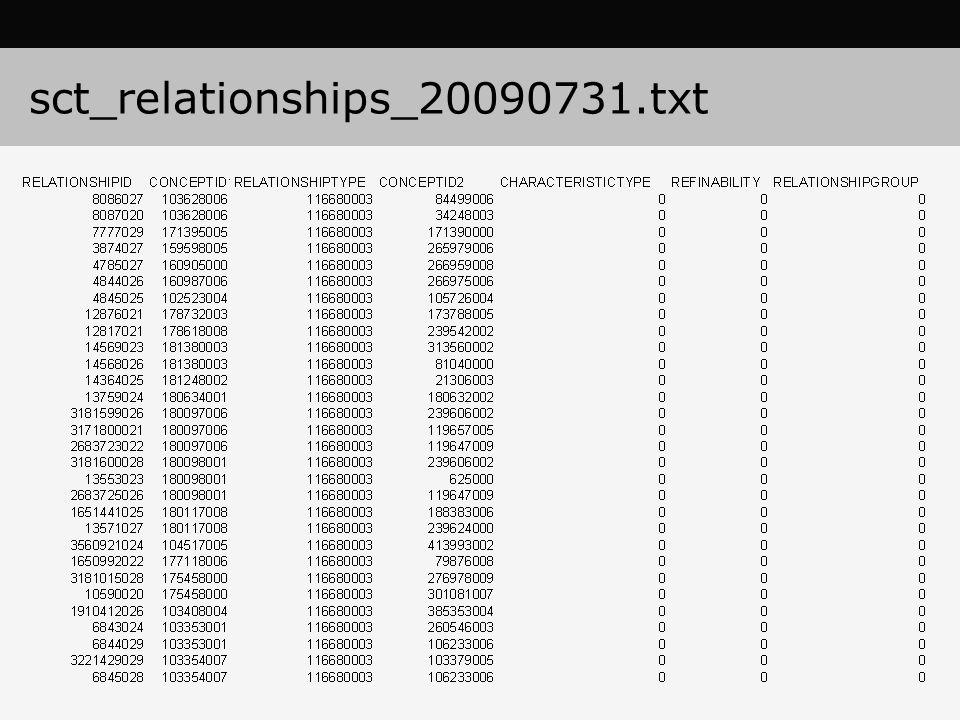 sct_relationships_20090731.txt