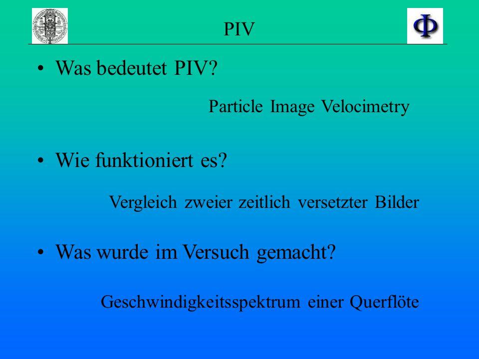 PIV Was bedeutet PIV.Wie funktioniert es. Was wurde im Versuch gemacht.