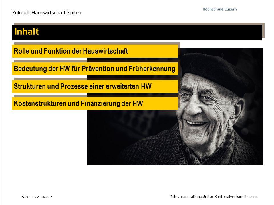 Folie Der Zeit- und Leistungsrahmen für (sozial-) betreuerische Leistungen Zukunft Hauswirtschaft Spitex Leistungsrahmen RAI-HC Nr.