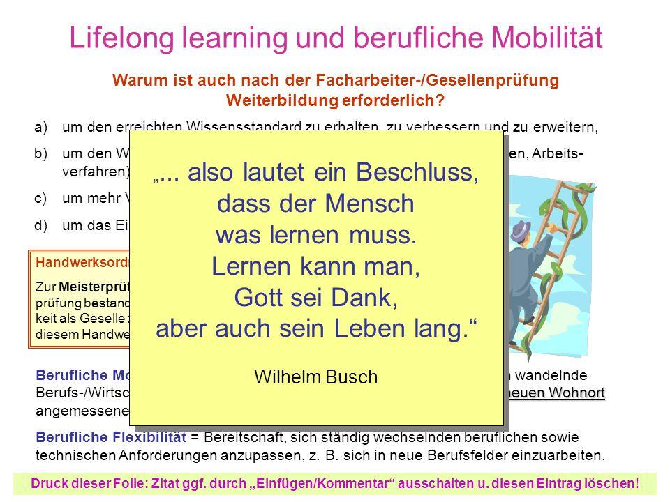 Lifelong learning und berufliche Mobilität a) b) c) d) um den erreichten Wissensstandard zu erhalten, zu verbessern und zu erweitern, um den Wissensstand neuen technischen Gegebenheiten (Maschinen, Arbeits- verfahren) anzupassen, um mehr Verantwortung übernehmen zu können, um das Einkommen steigern zu können.