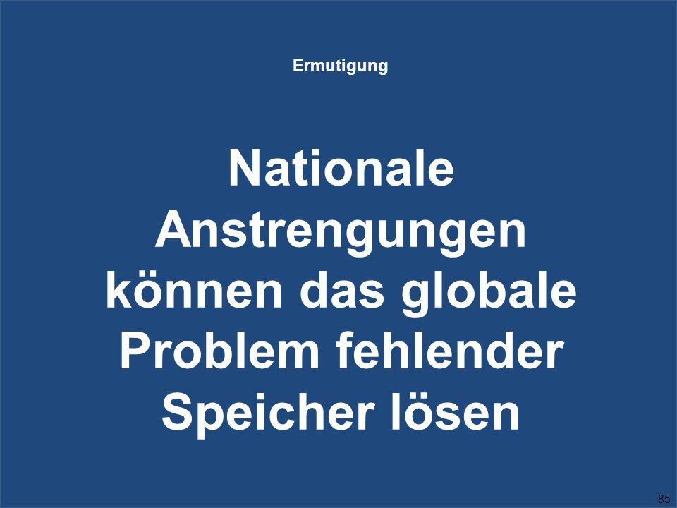 85 Ermutigung Nationale Anstrengungen können das globale Problem fehlender Speicher lösen