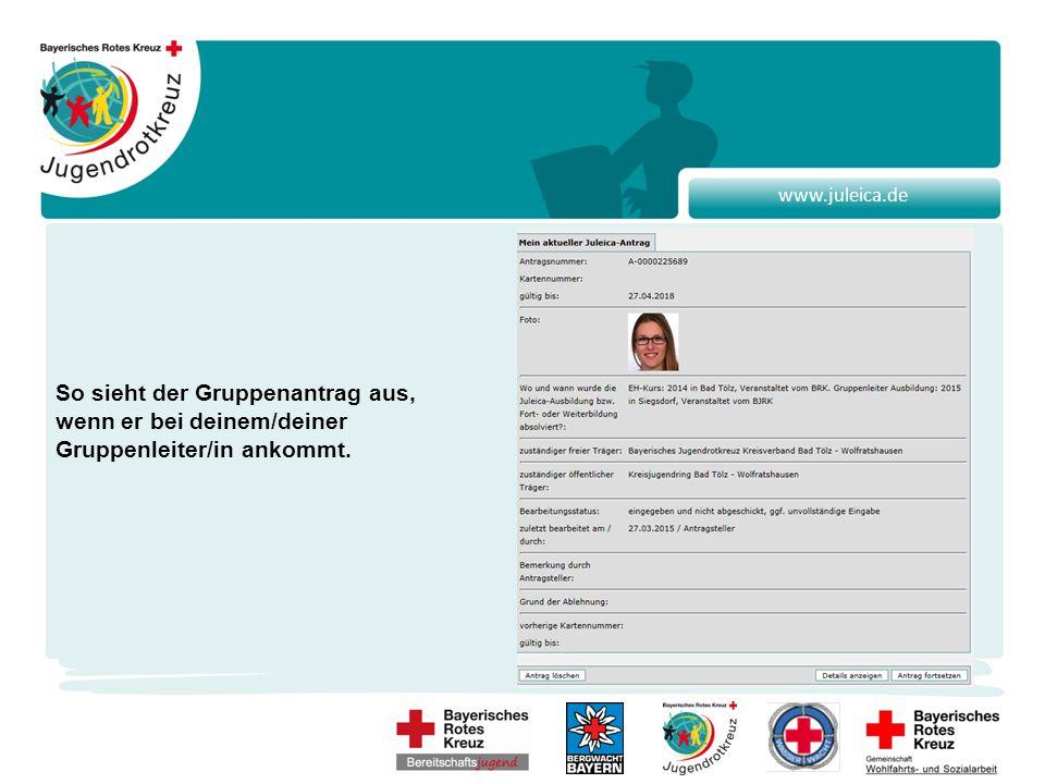 www.juleica.de So sieht der Gruppenantrag aus, wenn er bei deinem/deiner Gruppenleiter/in ankommt.
