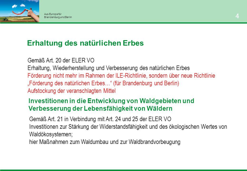 Aus Europa für Brandenburg und Berlin 4 Investitionen in die Entwicklung von Waldgebieten und Verbesserung der Lebensfähigkeit von Wäldern Gemäß Art.