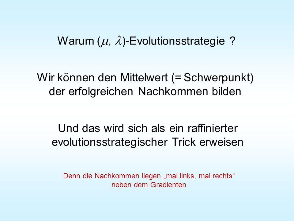 Warum ( , )-Evolutionsstrategie .