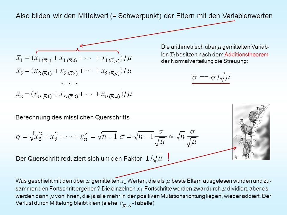 Also bilden wir den Mittelwert (= Schwerpunkt) der Eltern mit den Variablenwerten Der Querschritt reduziert sich um den Faktor !...