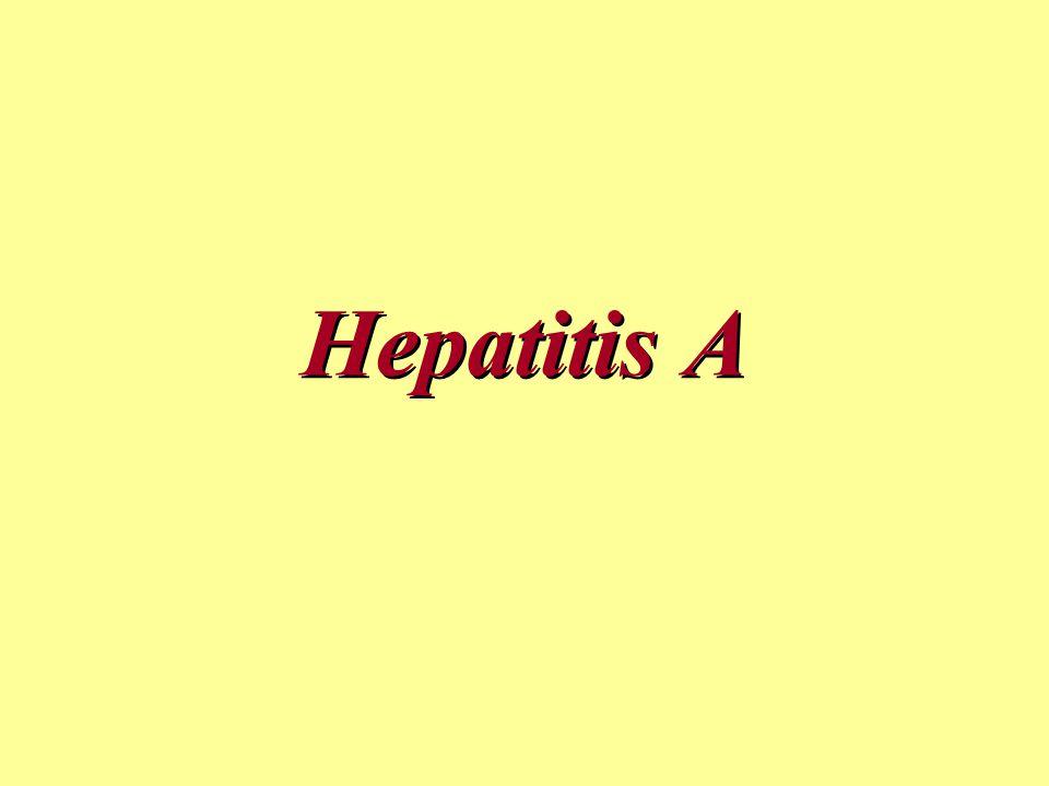 Hepatitis A Therapie kausal nicht möglich; Verhinderung der Weiterverbreitung: separate Toilette, Isolierung nur bei schwer lenkbaren Patienten, max.