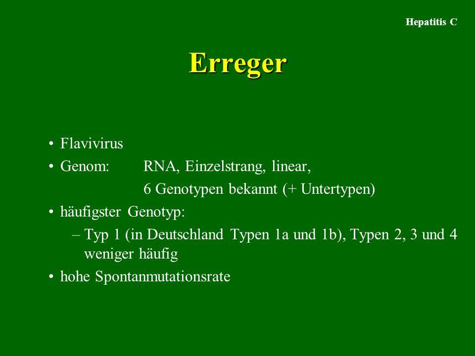 Hepatitis C Erreger Flavivirus Genom: RNA, Einzelstrang, linear, 6 Genotypen bekannt (+ Untertypen) häufigster Genotyp: –Typ 1 (in Deutschland Typen 1a und 1b), Typen 2, 3 und 4 weniger häufig hohe Spontanmutationsrate