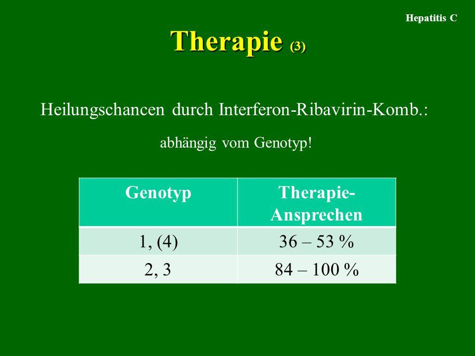 Therapie (3) Hepatitis C Heilungschancen durch Interferon-Ribavirin-Komb.: abhängig vom Genotyp! GenotypTherapie- Ansprechen 1, (4)36 – 53 % 2, 384 –