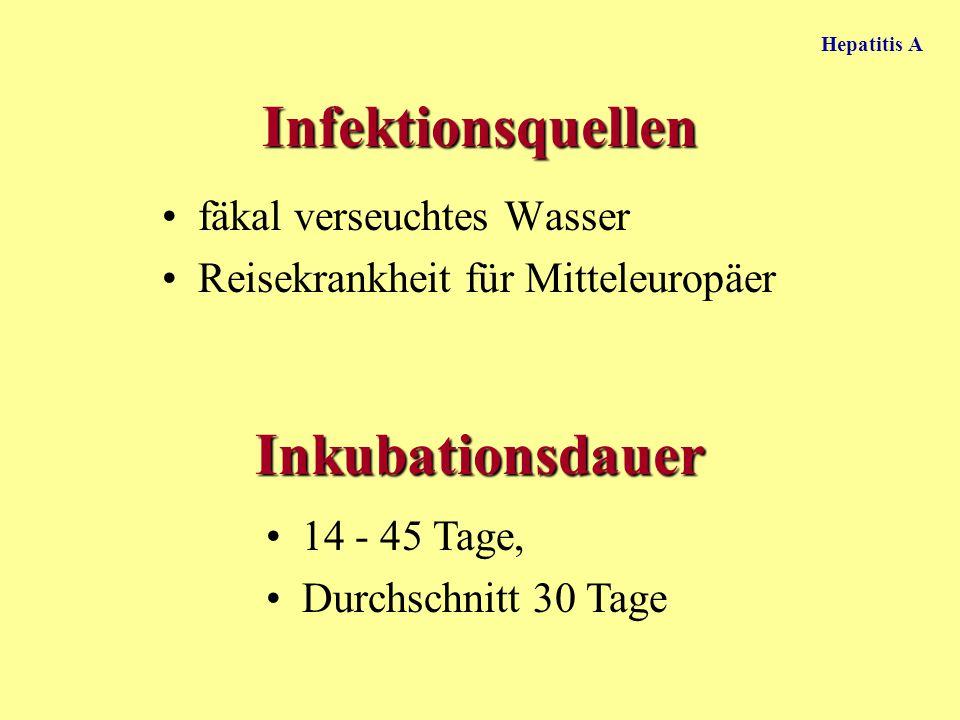 Infektionsquellen fäkal verseuchtes Wasser Reisekrankheit für Mitteleuropäer Inkubationsdauer 14 - 45 Tage, Durchschnitt 30 Tage