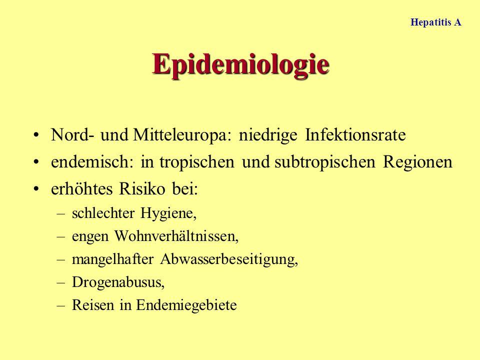 Hepatitis A Epidemiologie Nord- und Mitteleuropa: niedrige Infektionsrate endemisch: in tropischen und subtropischen Regionen erhöhtes Risiko bei: –sc
