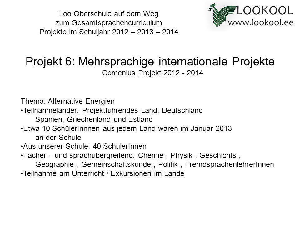 Thema: Alternative Energien Teilnahmeländer: Projektführendes Land: Deutschland Spanien, Griechenland und Estland Etwa 10 SchülerInnnen aus jedem Land