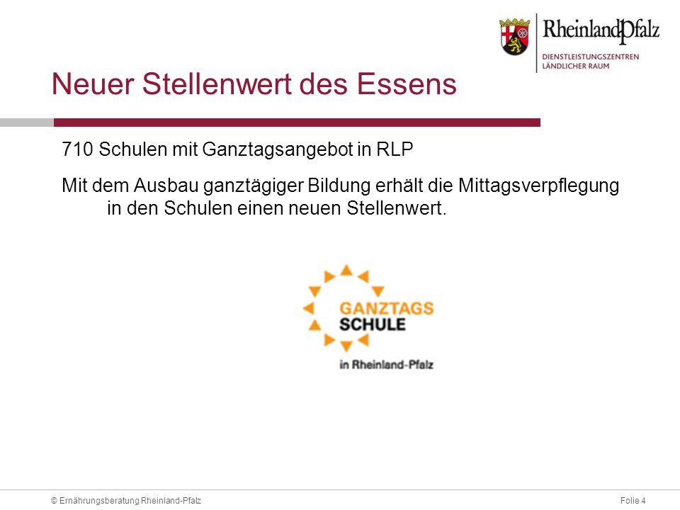 Folie 15© Ernährungsberatung Rheinland-Pfalz Angebot .