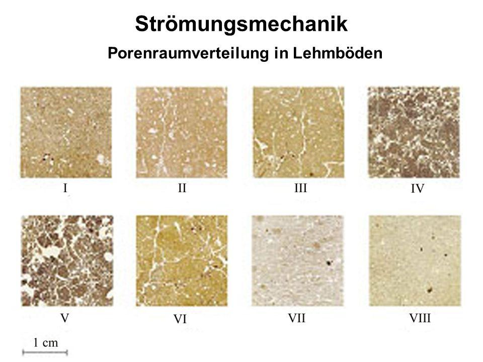Strömungsmechanik Porenraumverteilung in Lehmböden