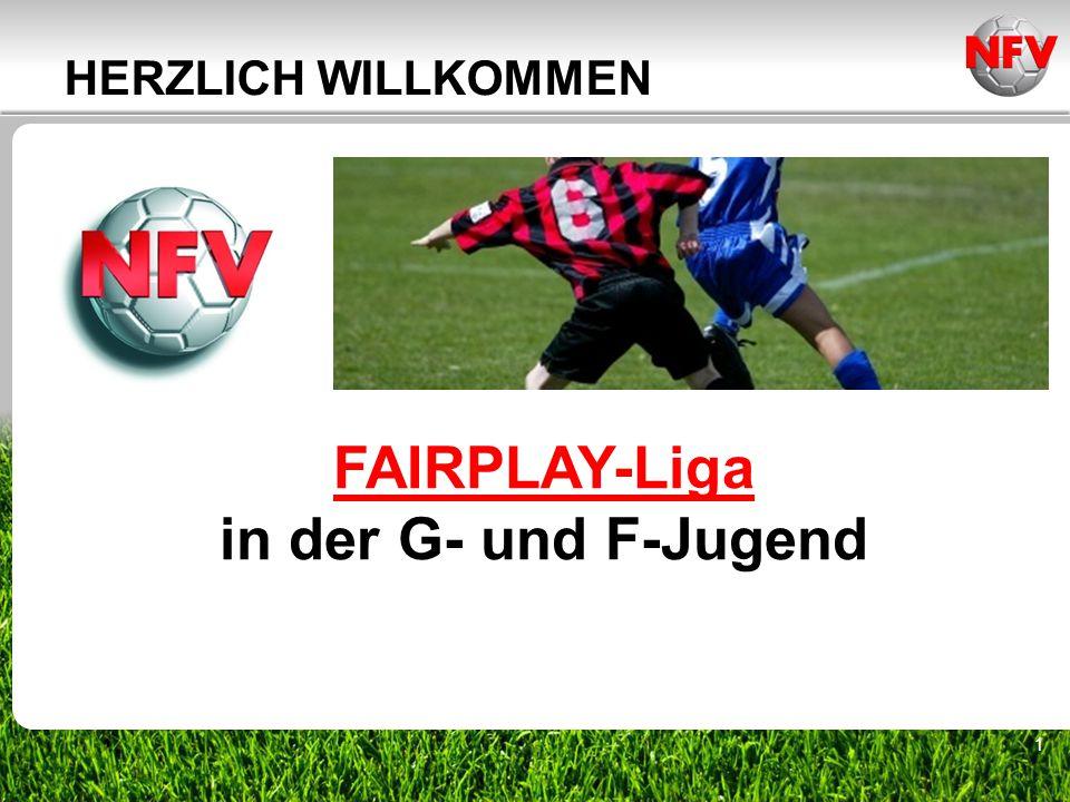 2 FAIRPLAY-Liga Einführung Schritt für Schritt