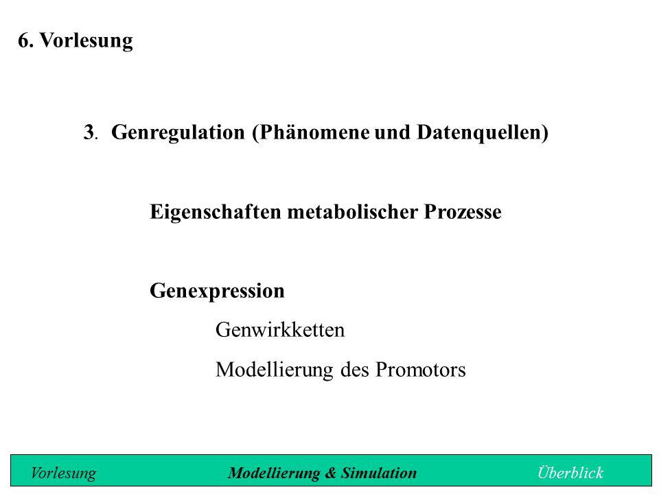 6. Vorlesung 3. Genregulation (Phänomene und Datenquellen) Eigenschaften metabolischer Prozesse Genexpression Genwirkketten Modellierung des Promotors