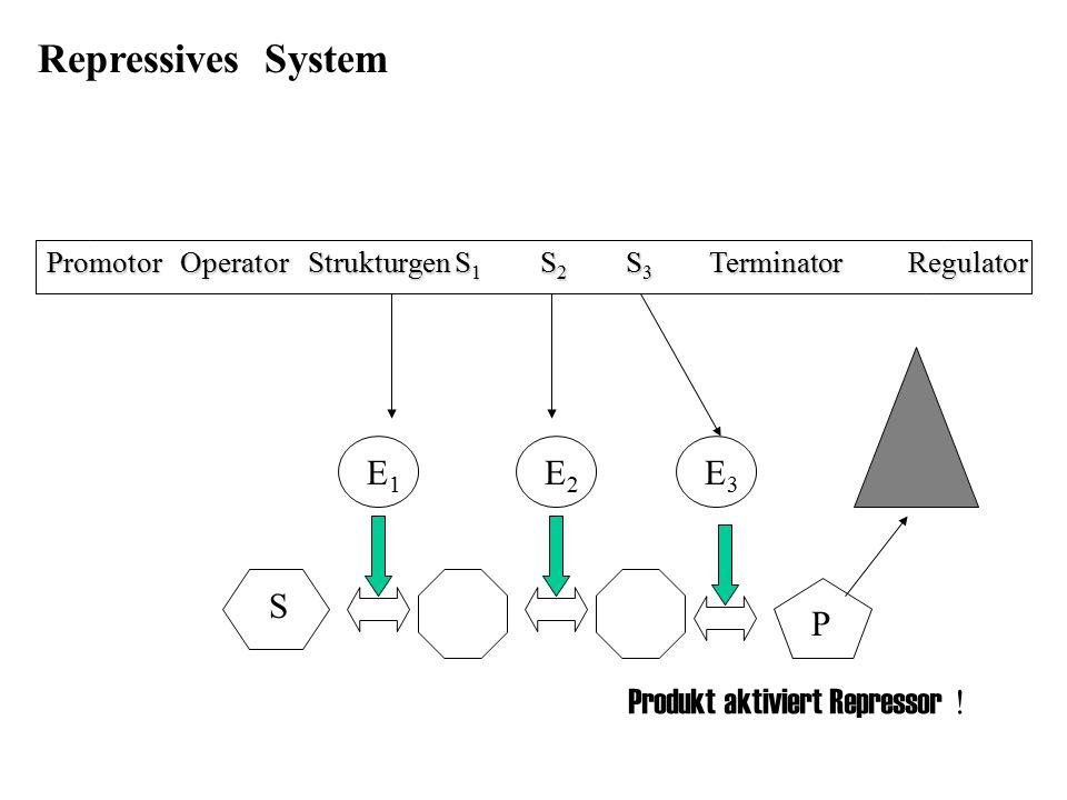 Promotor Operator Strukturgen S 1 S 2 S 3 Terminator Regulator E1E1 E3E3 E2E2 S P Repressives System Produkt aktiviert Repressor !