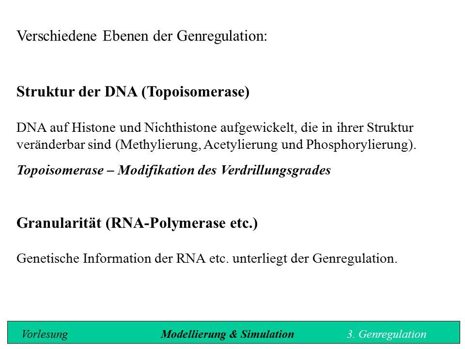 Verschiedene Ebenen der Genregulation: Struktur der DNA (Topoisomerase) DNA auf Histone und Nichthistone aufgewickelt, die in ihrer Struktur veränderb