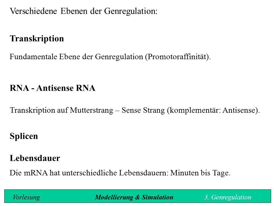 Verschiedene Ebenen der Genregulation: Transkription Fundamentale Ebene der Genregulation (Promotoraffinität). RNA - Antisense RNA Transkription auf M