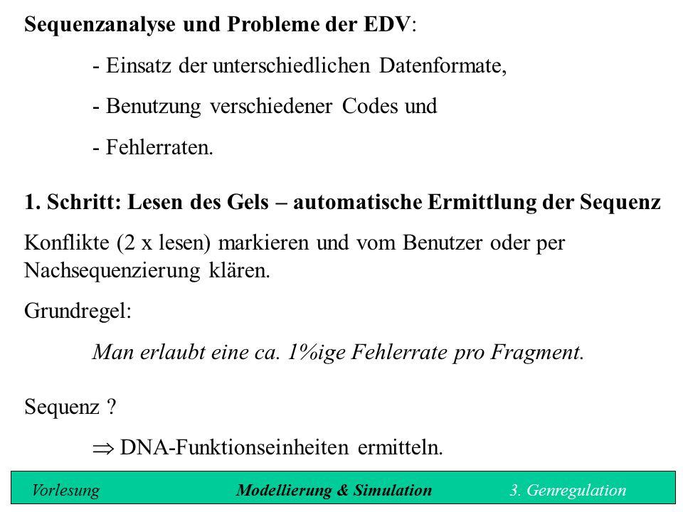 Sequenzanalyse und Probleme der EDV: - Einsatz der unterschiedlichen Datenformate, - Benutzung verschiedener Codes und - Fehlerraten. 1. Schritt: Lese
