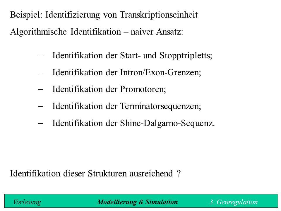 Beispiel: Identifizierung von Transkriptionseinheit Algorithmische Identifikation – naiver Ansatz:  Identifikation der Start- und Stopptripletts;  I