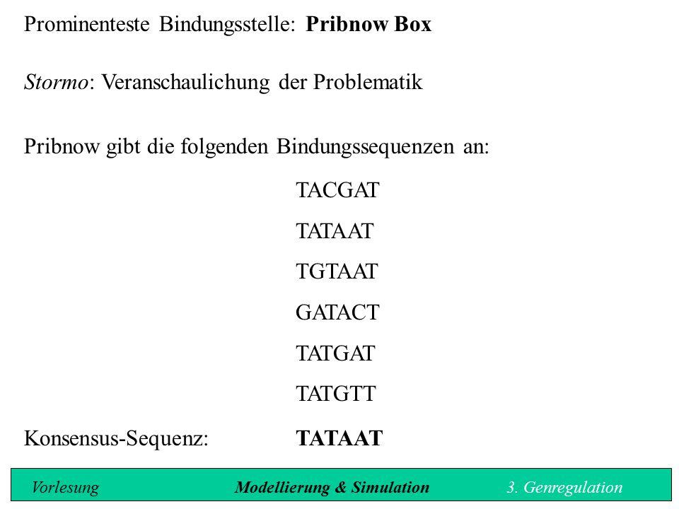 Prominenteste Bindungsstelle: Pribnow Box Stormo: Veranschaulichung der Problematik Pribnow gibt die folgenden Bindungssequenzen an: TACGAT TATAAT TGT
