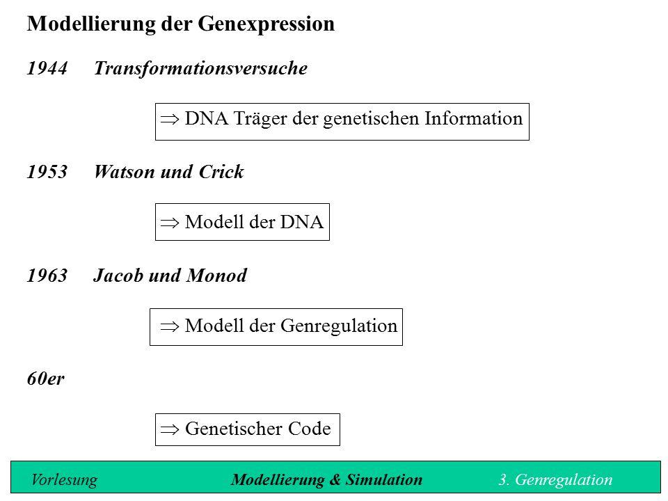 Modellierung der Genexpression 1944 Transformationsversuche  DNA Träger der genetischen Information 1953 Watson und Crick  Modell der DNA 1963Jacob