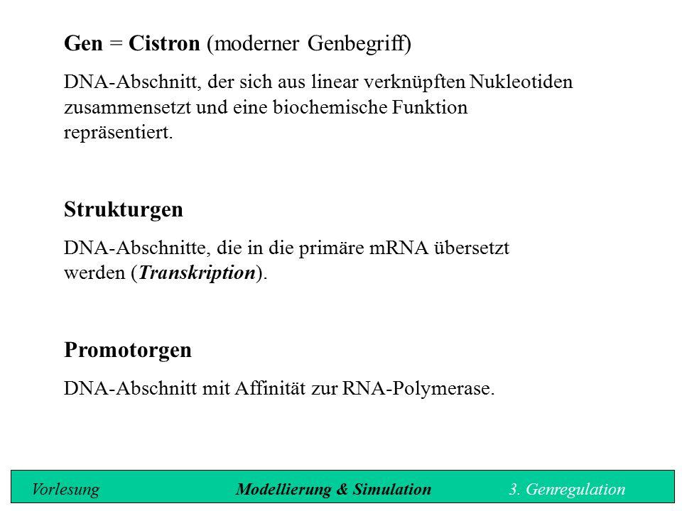 Gen = Cistron (moderner Genbegriff) DNA-Abschnitt, der sich aus linear verknüpften Nukleotiden zusammensetzt und eine biochemische Funktion repräsenti