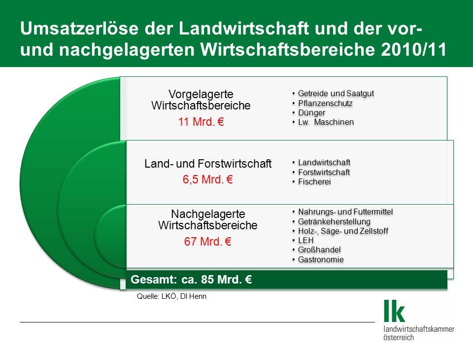 Umsatzerlöse der Landwirtschaft und der vor- und nachgelagerten Wirtschaftsbereiche 2010/11 Vorgelagerte Wirtschaftsbereiche 11 Mrd. € Land- und Forst