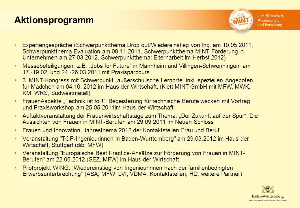 Aktionsprogramm Expertengespräche (Schwerpunktthema Drop out/Wiedereinstieg von Ing.