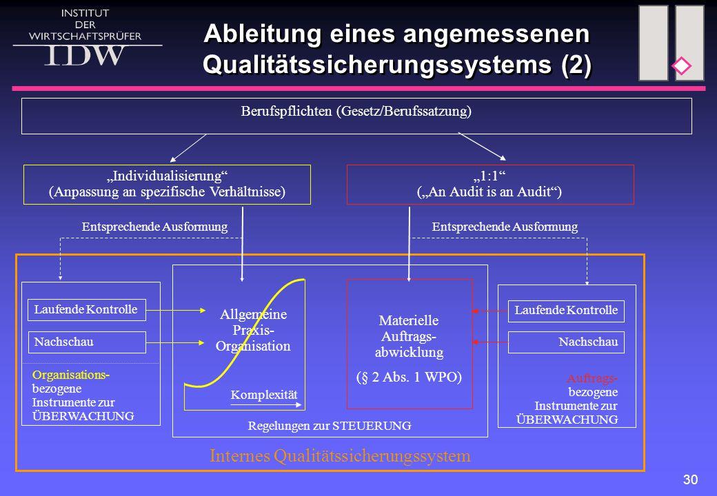 """30 Ableitung eines angemessenen Qualitätssicherungssystems (2) Berufspflichten (Gesetz/Berufssatzung) """"Individualisierung"""" (Anpassung an spezifische V"""