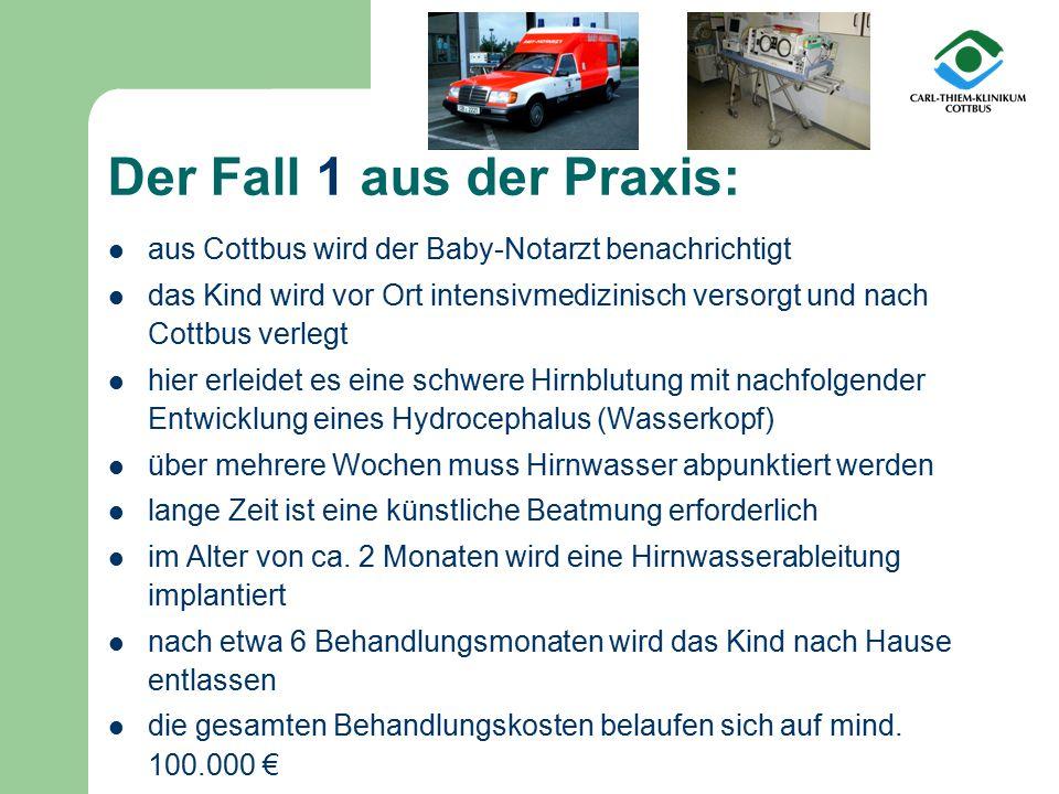 aus Cottbus wird der Baby-Notarzt benachrichtigt das Kind wird vor Ort intensivmedizinisch versorgt und nach Cottbus verlegt hier erleidet es eine sch