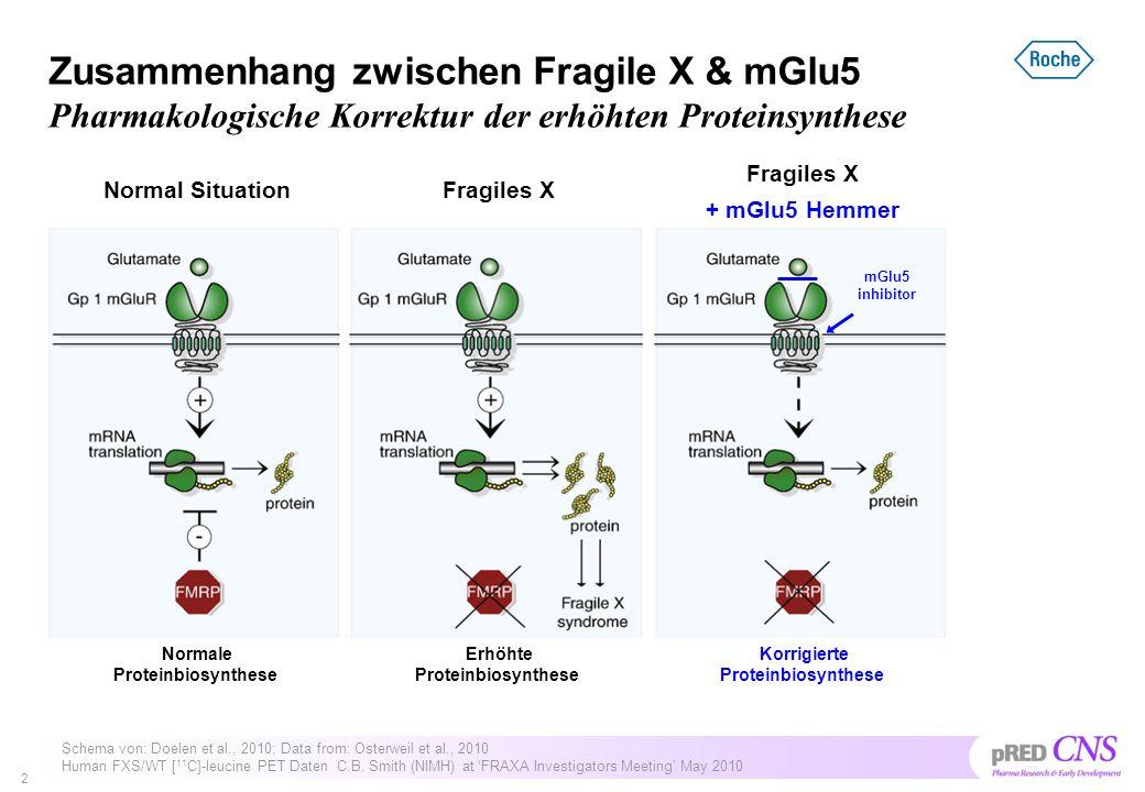 Zusammenhang zwischen Fragile X & mGlu5 Pharmakologische Korrektur der erhöhten Proteinsynthese 2 Schema von: Doelen et al., 2010; Data from: Osterwei