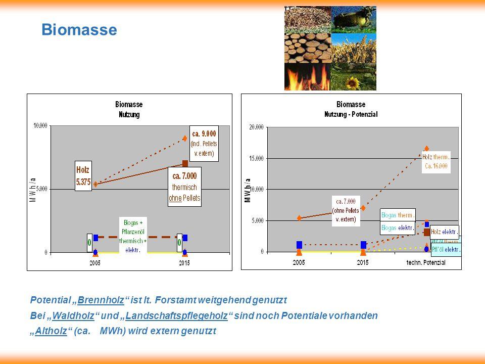 "Biomasse Potential ""Brennholz ist lt."