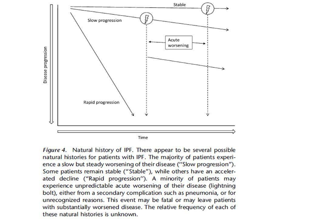 Therapie der Lungenfibrosen – IPF – wie weiter.